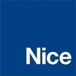 Logo sa NICE