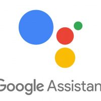 google-Assist1